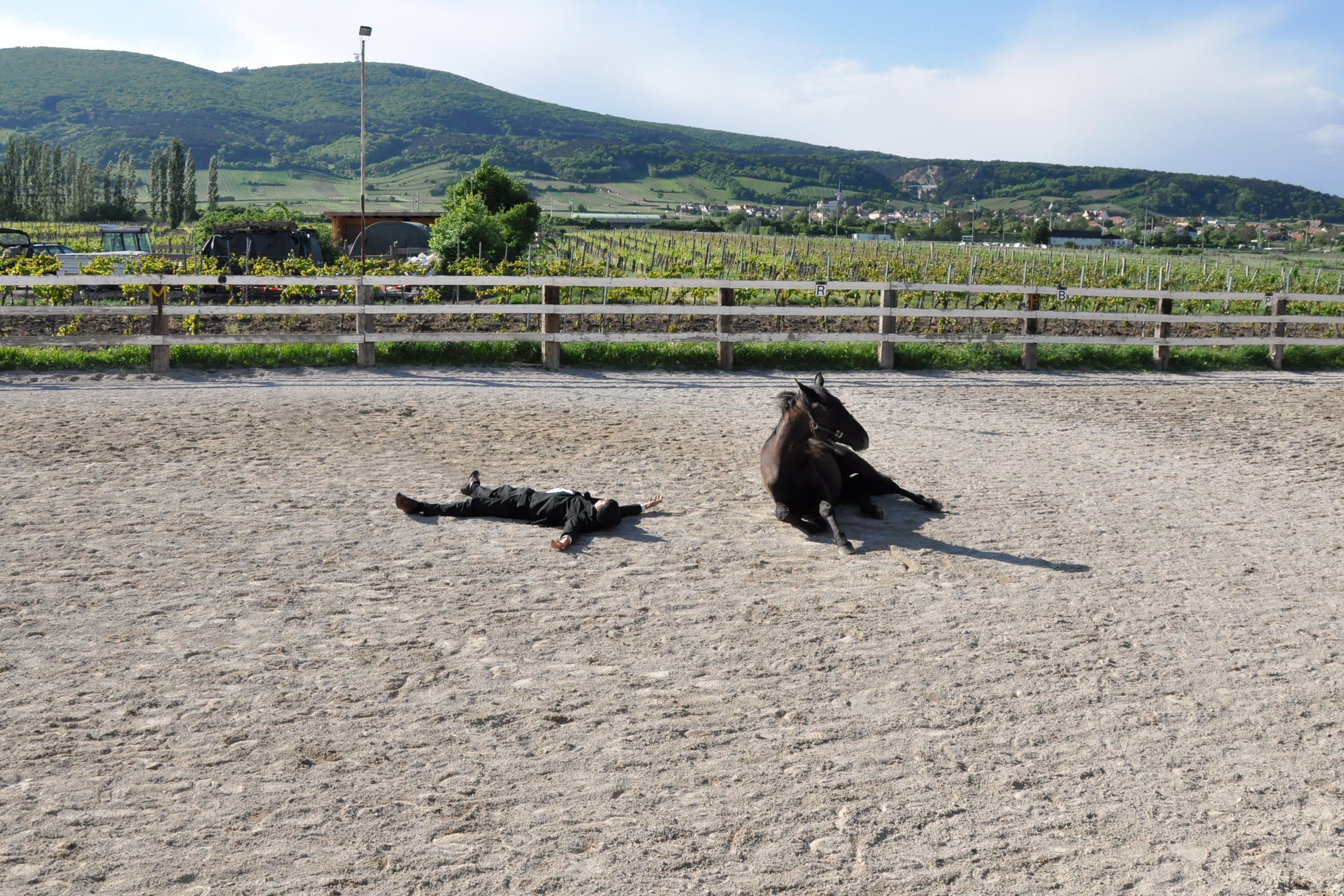 Rahman Hak-Hagir - FEIGNING DEATH HORSE AND HORSEMAN (2013)